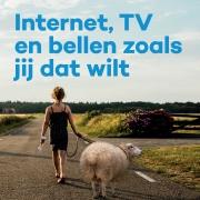 Eindelijk, snel internet over glasvezel in Westerveld